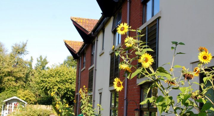 Image for Our coronavirus-free care home