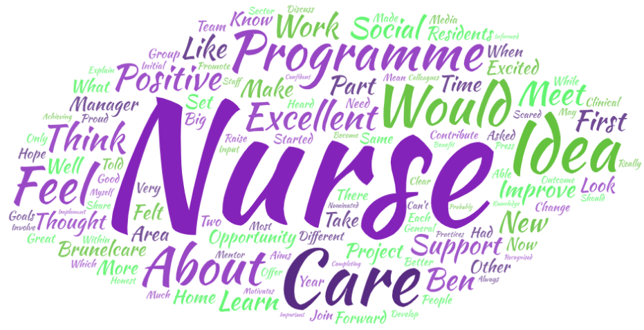 Brunelcare excellence in nursing programme word cloud